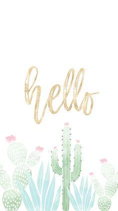Hello-Cactus.png - Box