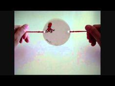 thaumatrope / taumatropo: juguete óptico inventado en 1824 por John Ayrton Paris en Inglaterra, para demostrar la persistencia de la retina.