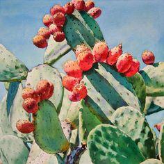 Cactus Apples Painting  - Cactus Apples Fine Art Print