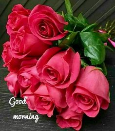Pretty In Pink, Beautiful Flowers, Good Morning Flowers, Rose Wallpaper, Morning Greeting, Trees To Plant, Pink Roses, Pink Flowers, Garden