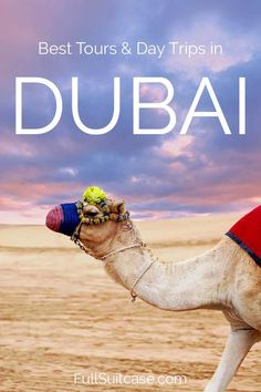 Best Dubai tours, da