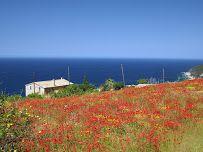 Banyalbufar - Mallorca