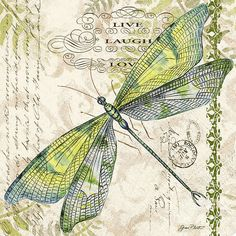 Dragonfly Art Print by Jean Plout. All prints are professionally printed, packaged, and shipped within 3 - 4 business days. Choose from multiple sizes and hundreds of frame and mat options. Vintage Ephemera, Vintage Paper, Vintage Art, Dragonfly Art, Butterfly Print, Vintage Flowers, Vintage Images, Fine Art America, Art Drawings