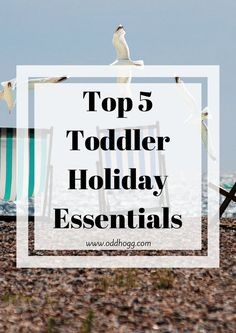 Top 5 Toddler Holiday Essentials | Unsure on what to pack for going abroad with your toddler? I have a list of things that i won't go away without https://oddhogg.com