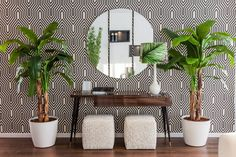 HALL: tropical Corridor, hallway & stairs by Movelvivo Interiores Halls Pequenos, Resort Interior, Creative Walls, Decoration, Decorative Accessories, Sweet Home, New Homes, Photo Wall, Indoor