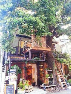 First Home Decoration .First Home Decoration Deco Design, Cafe Design, House Design, Future House, My House, Garden Cafe, Coffee Shop Design, Cafe Shop, Cafe Interior