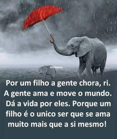 Love Mom, Unconditional Love, Special Words, Elephant, Messages, Memes, Quotes, Animals, Life