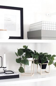 Black, white, & wood with DIY mini plant stands