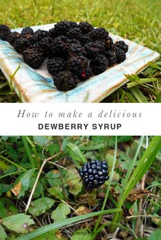 Dewberries grow on low, trailing brambles along fences, in woodlands, and in undisturbed areas. The dewberry syrup is just one way to enjoy this wild berry! Jelly Recipes, Jam Recipes, Canning Recipes, Vegan Recipes, Weed Recipes, Canning 101, Blackberry Syrup Recipes, Vegane Rezepte