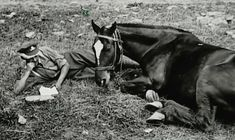 Horse and Rider relaxing
