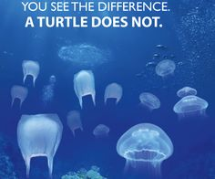 Ten percent of the plastic manufactured worldwide ends up in the ocean. often times sea turtles and other marine life mistake plastic debris as a delicious jellyfish causing death. Save Planet Earth, Save Our Earth, Ocean Pollution, Plastic Pollution, Water Pollution Poster, Photography Tattoo, Save Our Oceans, Marine Conservation, Wildlife Conservation