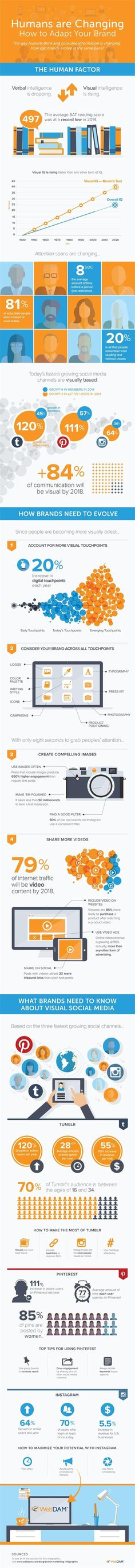 Social Media - What Brands Need to Know About Visual Social Media [Infographic] : MarketingProfs Article