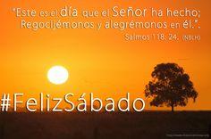 Dios te bendiga, Feliz Sábado ! #FelizSabado