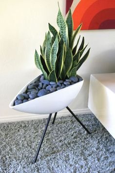 50s Atomic planter. I love the delicate atomic legs and the fact that the plant pot is off centre. Every home needs a few plants to keep the room fresh and alive.