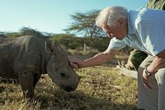 Sir David Attenborough hits out at big game hunters after 12-year-old admits to trophy hunting