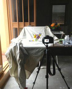 come fotografare il cibo nozioni base