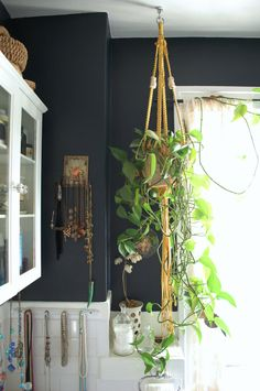 dark walls, white tile, plants plants plants