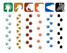 GRAPHIC AMBIENT » Blog Archive » National Zoo Washington, USA