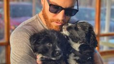 Puppies Found In Desert Go On Adventures With Their New Dad He found two puppies abandoned in the desert — then adopted them and now they're all grown up. #dogs #puppies #rescue #animals