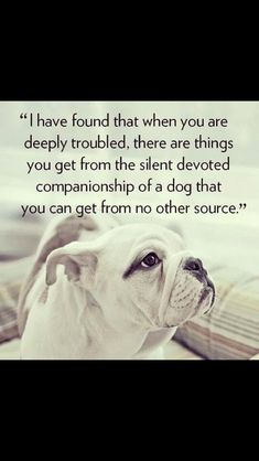 """""""I have found that when you are deeply troubled, there are things you get from the silent devoted companionship of a dog that you can get from no other source."""""""