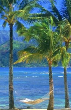 #Kauai Beach #Hawaii  - one of my favorite places in the world