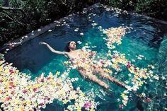 flowers in pool