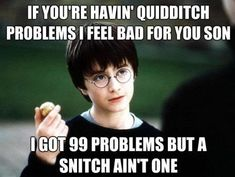 if you're havin' quidditch problems i feel bad for you son....i got 99 problems but a snitch ain't one