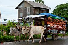 Mobil pottery market, Phnom Penh, Cambodia