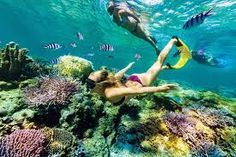 Fiji Adventure in Fiji and explore this exotic place. Get travel guides and plan your trip to Fiji. Get best offers on your Fiji Tour packages. Fiji Culture, Egypt Culture, Fiji Holiday, Fly To Fiji, Visit Fiji, Fiji Beach, Visit Egypt, Egypt Travel, Holiday Pictures