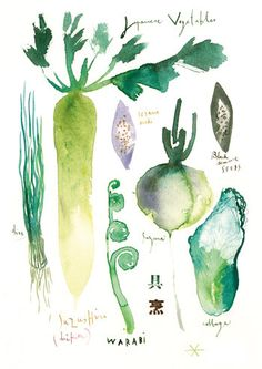 Japanese vegetables, Watercolor painting, 11X14 print, Kitchen art, Asian food poster, Green wall decor
