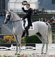 Blue Hors Matine....Other people have sport type super heroes. This horse was my sport type super hero. Sadly she has passed on.