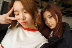 Chaetzu #twice #chaeyoung #nayeon #jeongyeon #sana #mina #tzuyu #kpop #fangirl #momo #jihyo #dahyun