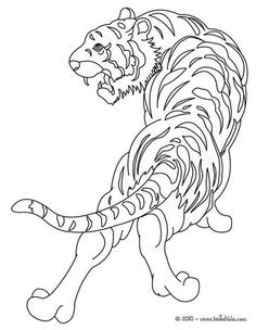 Tiger picture coloring page. Print this Tiger picture coloring page out or color in online with our new coloring machine. You can create nice variety of . Animal Coloring Pages, Coloring Sheets, Adult Coloring, Tiger Pictures, Animal Pictures, Jungle Animals, Wild Animals, Animal Posters, Black And White Abstract