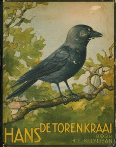 lovely old crow illustration