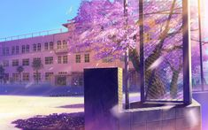 Find the best Anime Cherry Blossom Wallpaper on GetWallpapers. We have background pictures for you! Aesthetic Desktop Wallpaper, Anime Scenery Wallpaper, Anime Backgrounds Wallpapers, Aesthetic Backgrounds, Hd Wallpaper, Wallpaper Gallery, Anime Artwork, Iphone Wallpapers, Anime Cherry Blossom
