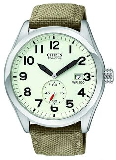 Citizen Men's Eco Drive BV1080-18A