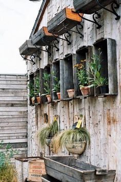 awesome way to add to a plain shed wall without taking away from the character of the shed. love it.