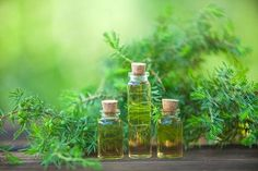 Why should you use tea tree oil? These are the biggest benefits of tea tree oil, as well as how you can be using it for skincare and grooming. Tea Tree Special Shampoo, Australian Tea Tree, Home Remedies For Skin, Are Essential Oils Safe, Implant, Fungal Infection, Sagging Skin, Oil Benefits, Facial Cleansing