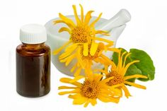 Arnica Oil is considered as one of the best oils to prevent hair loss. An excellent anti-inflammatory agent, arnica oil is also known for its antioxidant properties that enrich the scalp and protect hair from damage. Best Oils, Best Essential Oils, Headache Remedies, Herbal Remedies, Arnica Planta, Natural Treatments, Natural Cures, Natural Oil, Arnica Montana