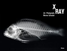 X-Ray: art-photography by Werner Schuster.