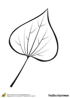 Coloriage / dessin feuilles automne lierre