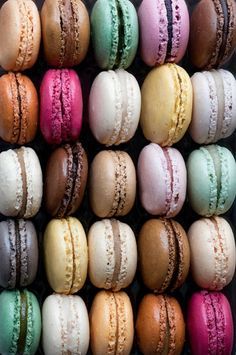 Rainbow macarons... or rainbow krabby patties <<<pinning for that comment