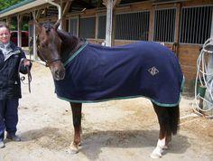 fleece dress sheet