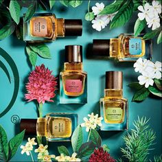 The Body Shop: Elixirs of Nature Collection  (2016) #beautynews #beauty2016…