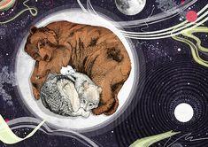 bear and wolf moon -- Sandra Dieckmann
