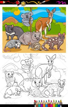 marsupials animals cartoon coloring book ...  Tasmanian, Tasmanian Devil, animals, background, bandicoot, bilby, black, book, cartoon, character, cheerful, clip art, collection, coloring, coloring book, comic, cute, devil, drawing, education, fairy tale, fantasy, funny, graphic, group, happy, illustration, kangaroo, koala, landscape, mammal, marsupials, mascot, opossum, page, preschool, quoll, scene, set, species, tail, tiger quoll, vector, white, wild, wildlife, wombat, zoo, zoology