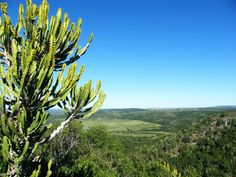 View from Kariega Game Reserve in the Eastern Cape of South Africa.