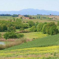 Toskanische Landschaft, Bio Urlaub mit ReNatour