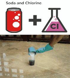 element experiment