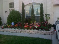 Front yard at my client's home!  #BenHuynhRealtor